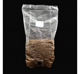 2 x Pre Sterilized Rye Grain Bags with injection ports - - FREE SHIPPING